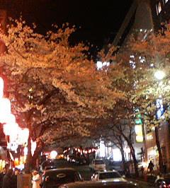 渋谷区桜ケ丘